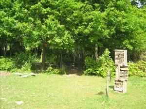 29 good landscape gardener jobs in colchester for Garden design jobs essex